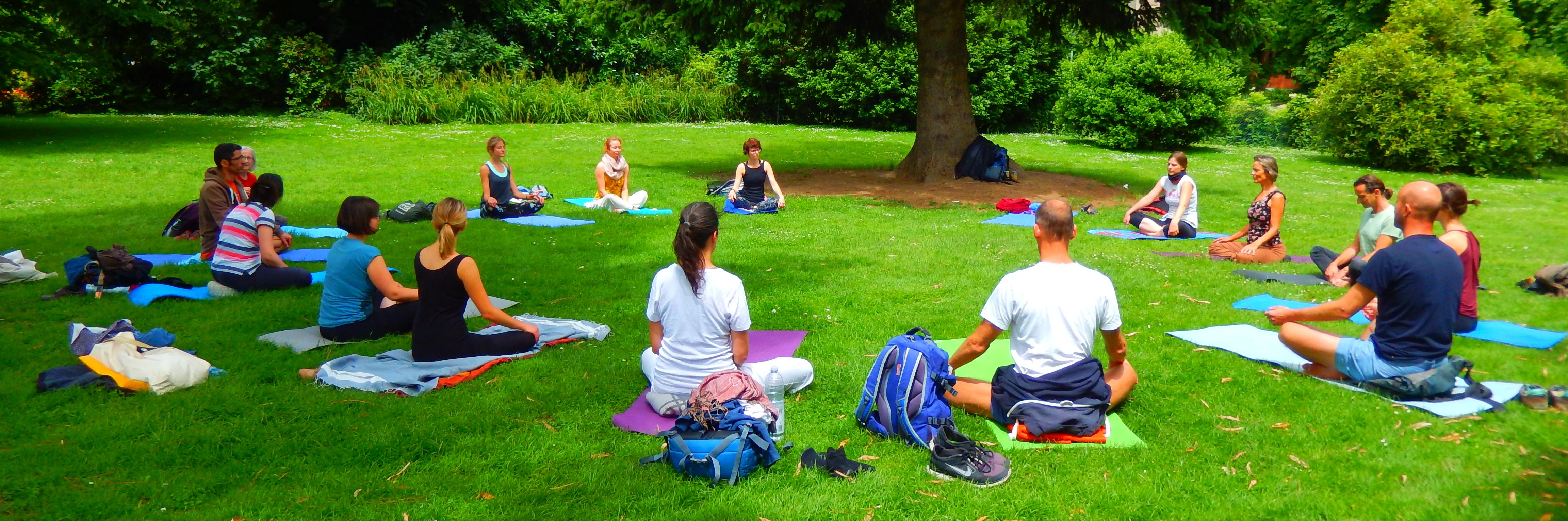 Yogalehrer Grundausbildung am Strang